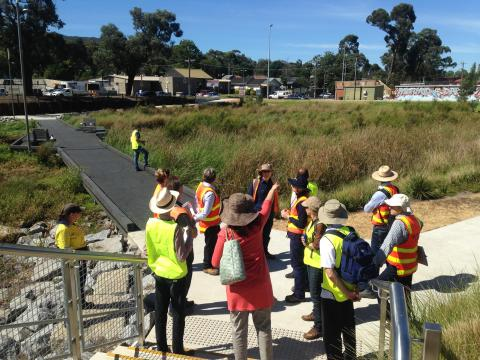 Conducting a wetland audit - WSUD Audit Guideline Training